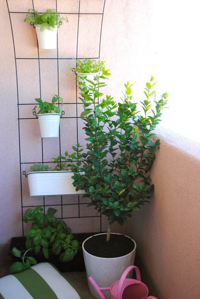 balcony herb garden wide